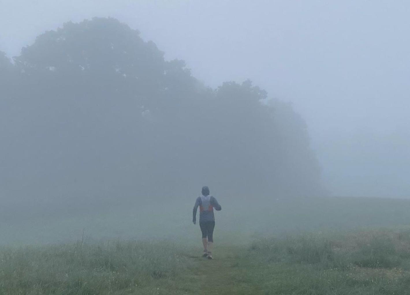 Löpare springer i hage med dimma